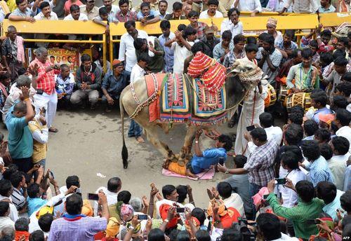یک گردهمایی اعتراضی علیه دولت محلی کارناتاکا در بنگلور هند