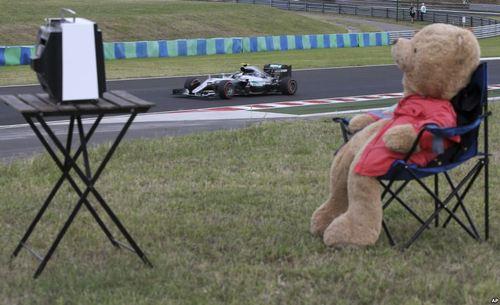 مسابقات اتومبیلرانی فرمول یک در مجارستان