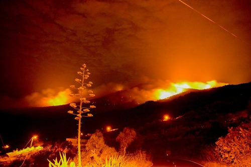 آتش سوزی مهیب در جنگل های جزایر قناری اسپانیا . این آتش سوزی در اثر اهمال و غفلت یک گردشگر 27 ساله آلمانی ایجاد شده است