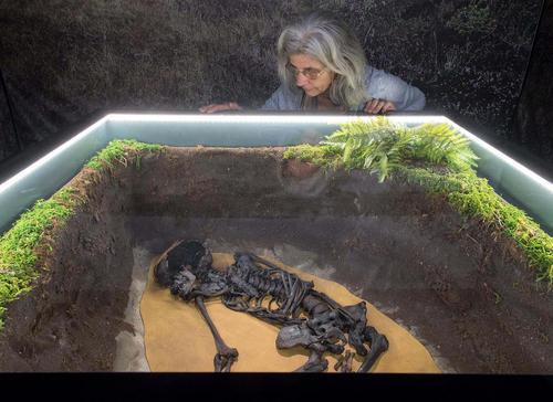 نمایش یک اسکلت کشف شده انسانی در نمایشگاه – موزه ای در شهر اِمدن آلمان
