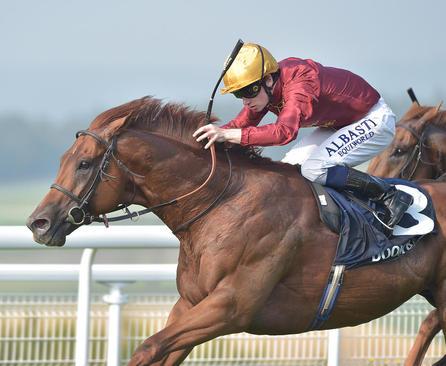 مسابقات اسب سواری در ساسکس بریتانیا