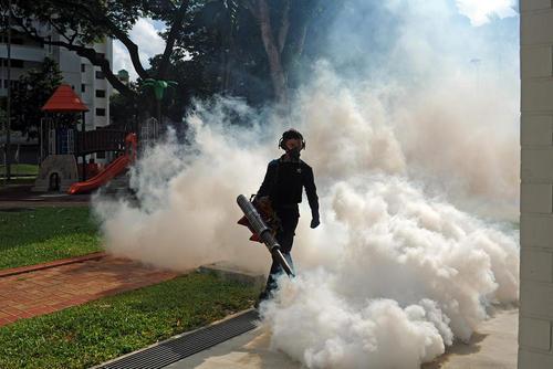 سم پاشی علیه پشه های حامل ویروس زیکا در سنگاپور