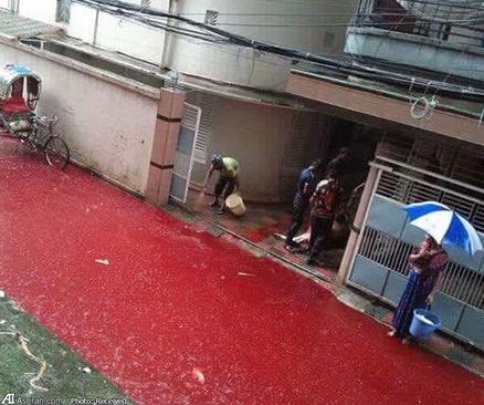 جاری شدن جوی خون در خیابان های شهر داکا پس از عید قربان