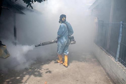 سم پاشی برای مقابله با ویروس زیکا – آچه اندونزی