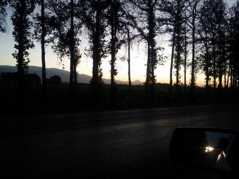 طلوع آفتاب- کوچه باغ های شهریار- سید مرتضی مختاری