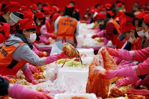 جشنواره کیمچی – یک غذای سنتی کره ای ها – در شهر سئول