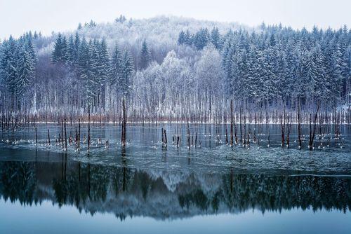 بارش نخستین برف پاییزی در رومانی