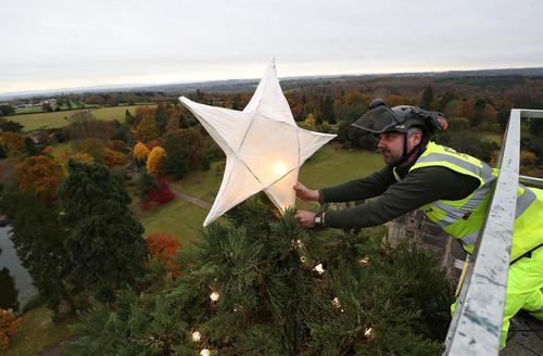 تزیین بلندترین کاج طبیعی کریسمس در انگلیس
